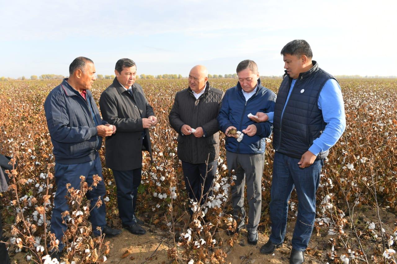 В Туркестанской области обсудили актуальные вопросы хлопководства
