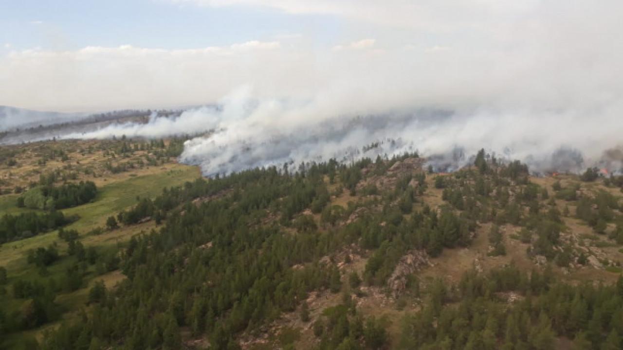 В Карагандинской области горят 2700 га леса