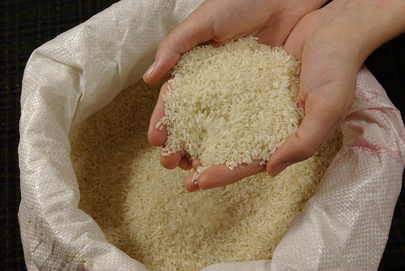 В Кызылординской области в 2018 году введены в эксплуатацию четыре рисоперерабатывающих завода