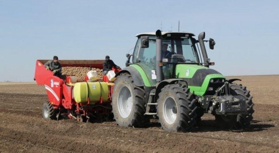 Запасы капусты в стабфонде Карагандинской области увеличат на 28%