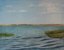 На озерах Шалкар и Имантау в СКО предлагают развивать экологический туризм