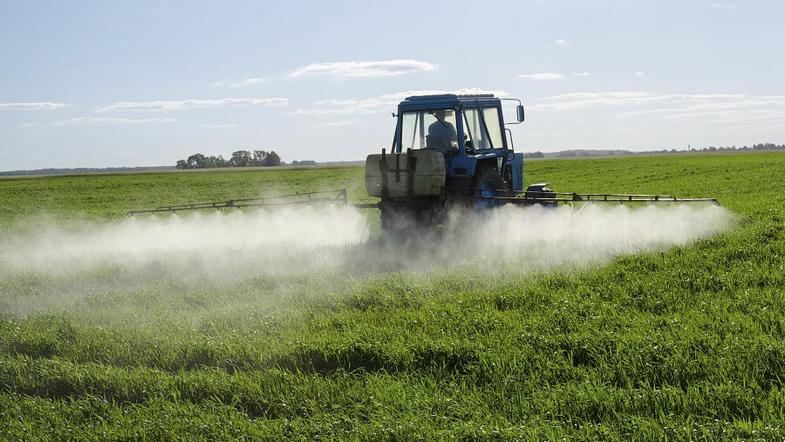 5 мың фермердің мәселесі барлық астық алқабына кері әсер етуде