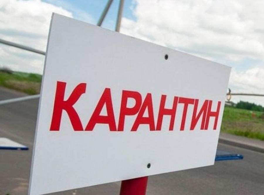 В Алматинской области приостанавливают офлайн-обучение