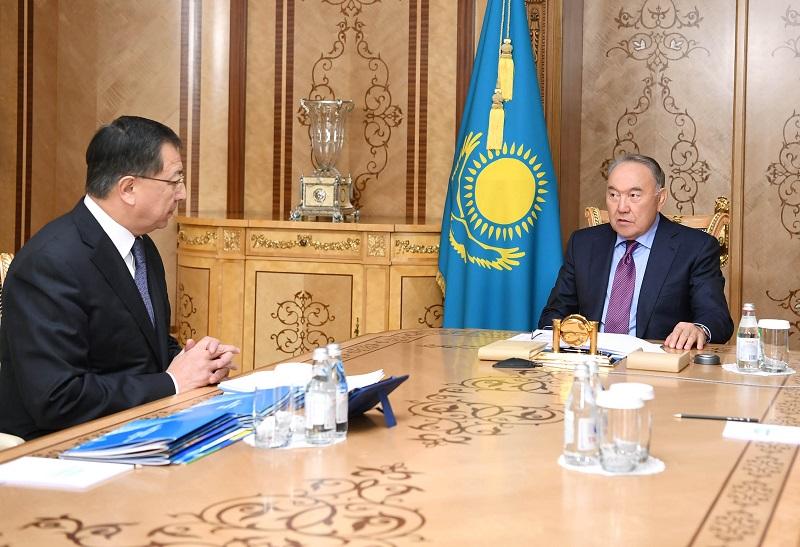 Нурсултан Назарбаев принял зампреда Ассамблеи народа Казахстана