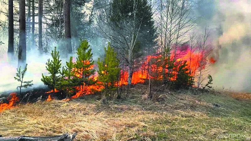 Третий вертолет направлен для тушения лесного пожара в ВКО