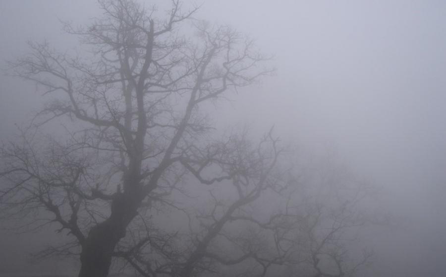 Погода в РК: штормовое предупреждение объявлено в Мангистауской области