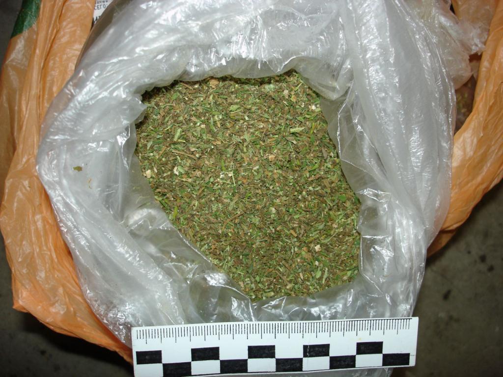 Более 200 кг марихуаны изъято в Павлодарской области