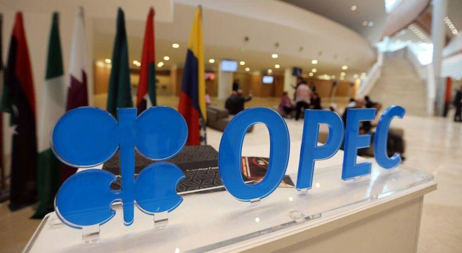 ОПЕК+ убирает четверть добычи и ждет поддержки G20