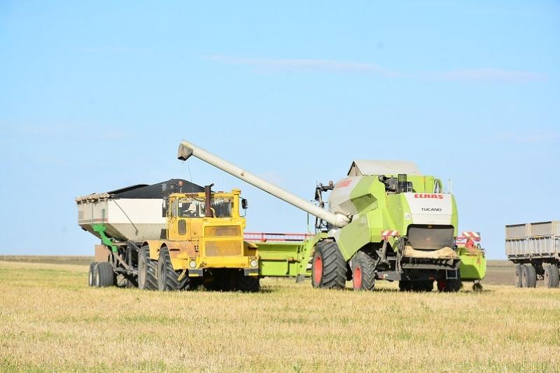 Туркестанская область намерена увеличить экспорт сельхозпродукции в 2,5 раза к 2022 году