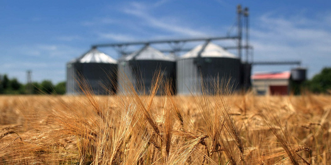 В СКО аграрии не могут вывезти своё зерно с элеваторов