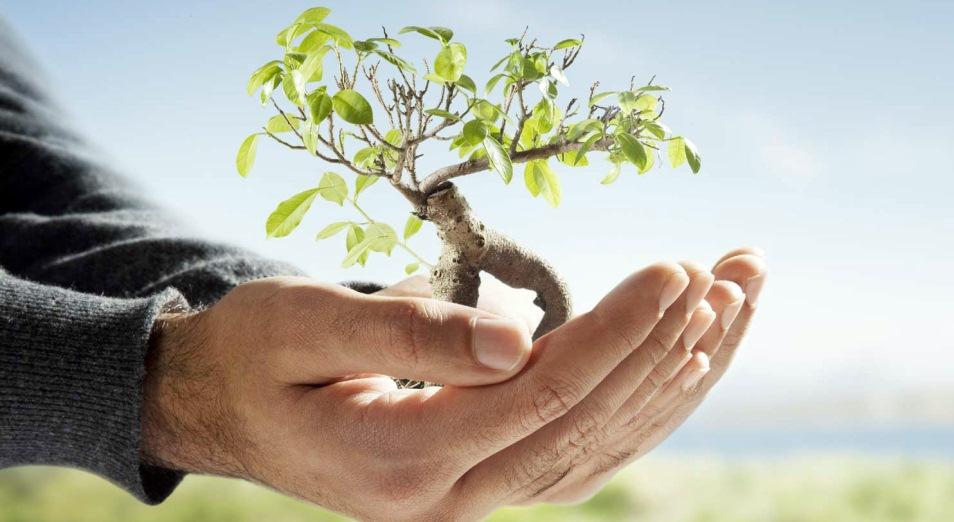 Казахстан ведёт работу над новым Экологическим кодексом