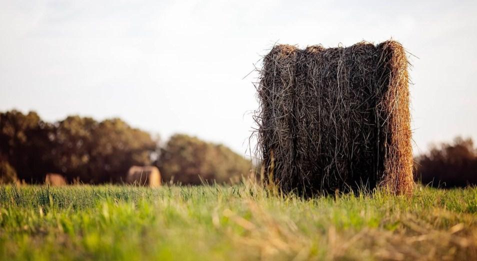 Фермеров будут учить рационально пользоваться землей