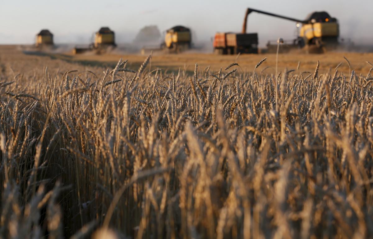 Эксперты сообщают о проблемах с урожаем в КНДР