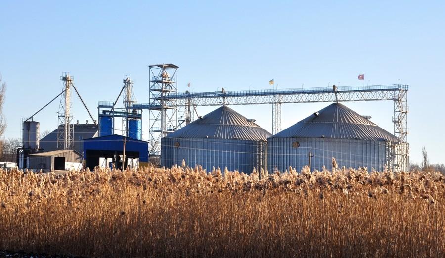 Казахстан планирует возобновить экспорт пшеницы в Египет