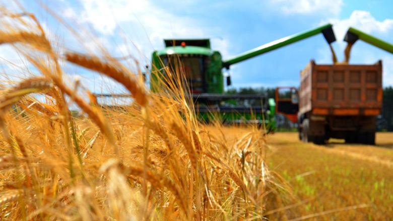 За 2018 год продукция сельского хозяйства подорожала на 7,8%