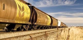 Карагандинские мукомолы жалуются на проблемы с вывозом продукции по железной дороге