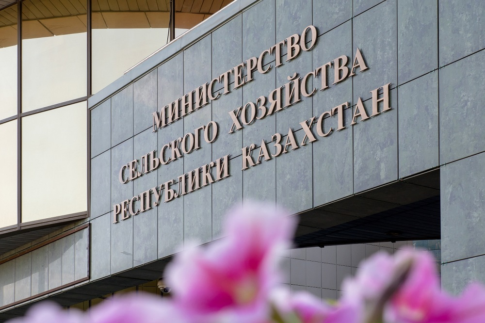 Минсельхоз принял заявки на форвардный закуп на 21,5 млрд тенге