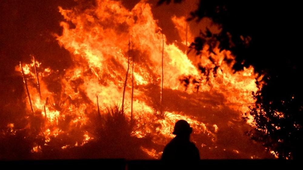 Крупный пожар тушат на базе отдыха в Акмолинской области