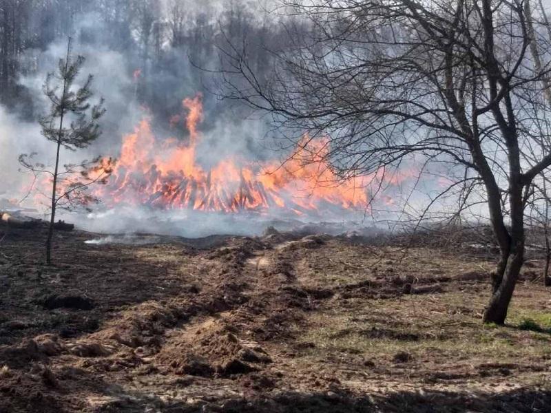 Пожары в Чернобыльской зоне до сих пор не потушены