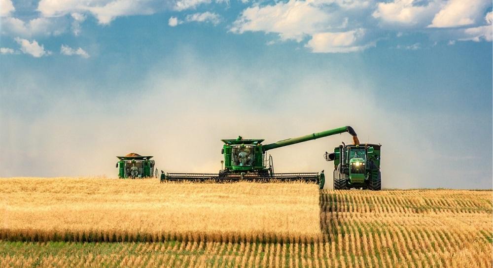 В Казахстане намолочено более 7 млн тонн зерновых и зернобобовых