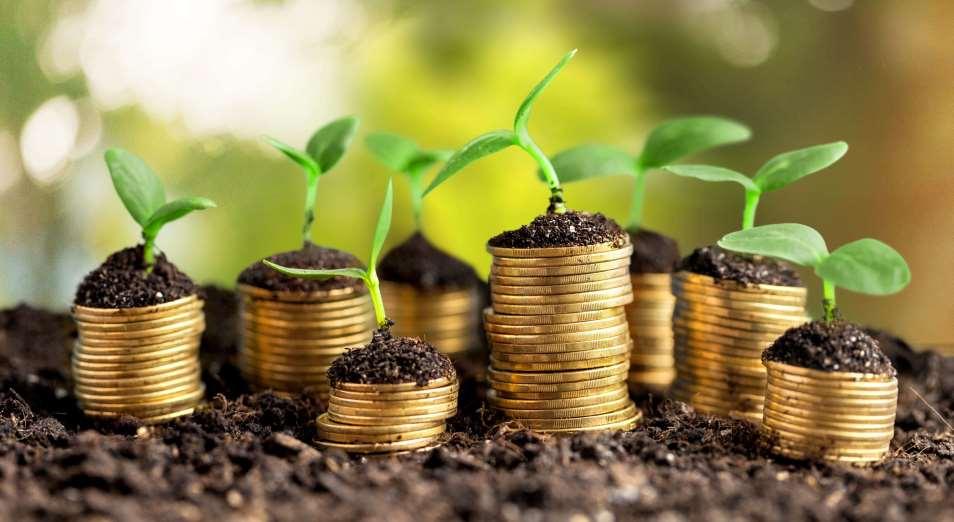 Инвестиции без эмоций: куда вложили деньги в 2019 году