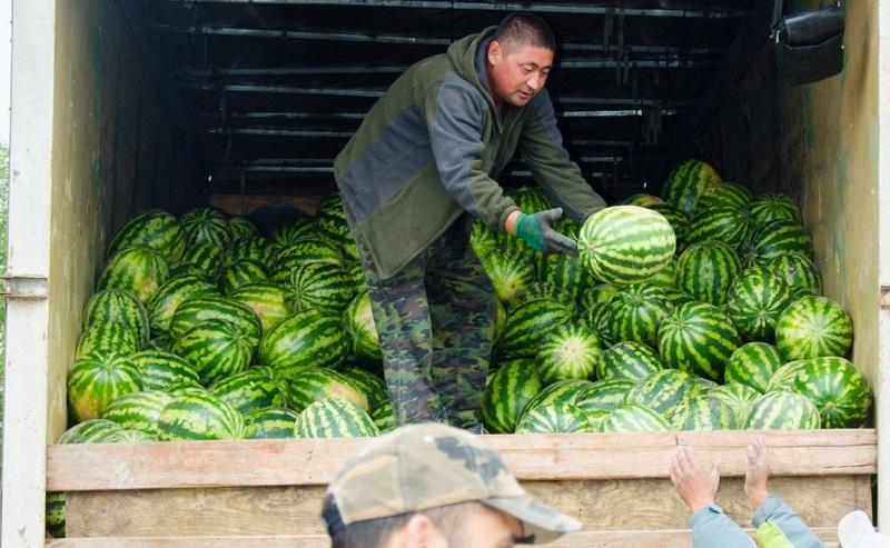 Алматинская и Костанайская области представили продукцию на ярмарке в столице