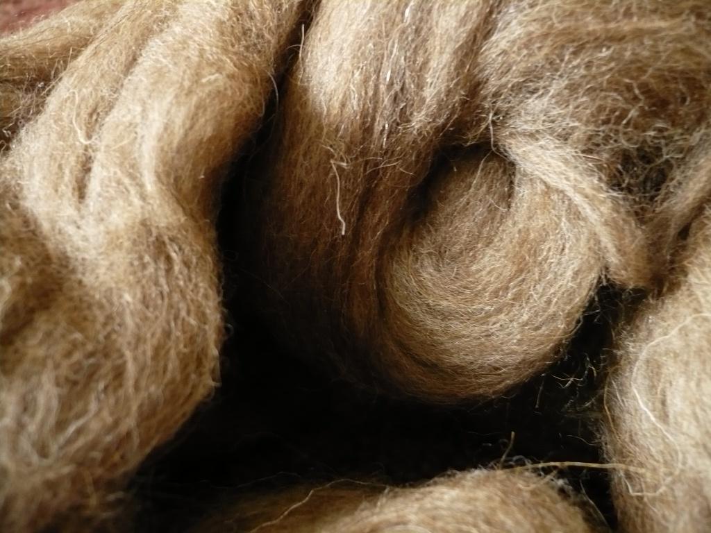 Казахстан договорился об экспорте сухого верблюжьего молока и шерсти в КНР
