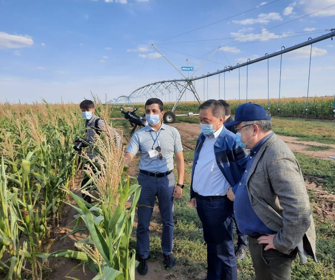 Глава МСХ РК обсудит с фермерами получение разрешения на экспорт люцерны в КНР
