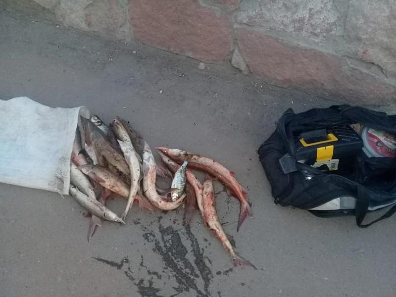 В Павлодаре задержали браконьера с уловом стерляди