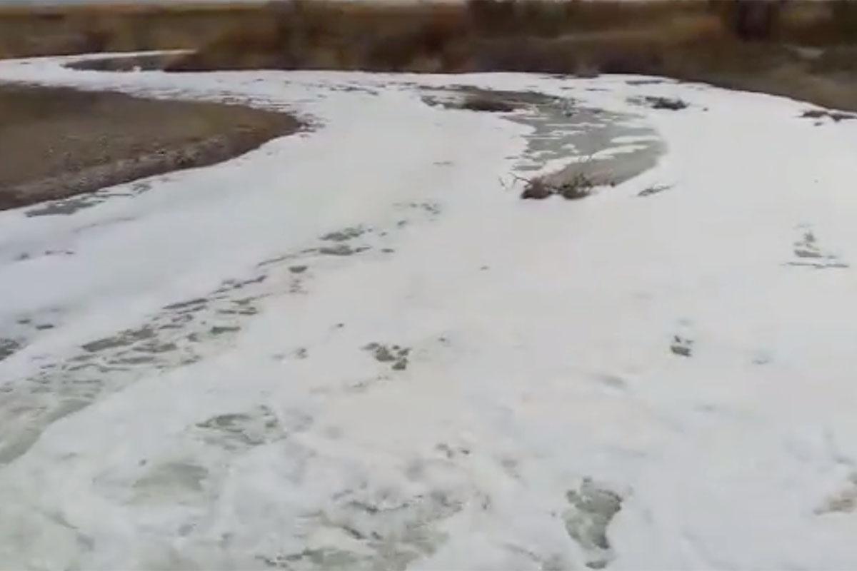 В Алматинской области на реке Усек образовалась пенная масса с резким химическим запахом