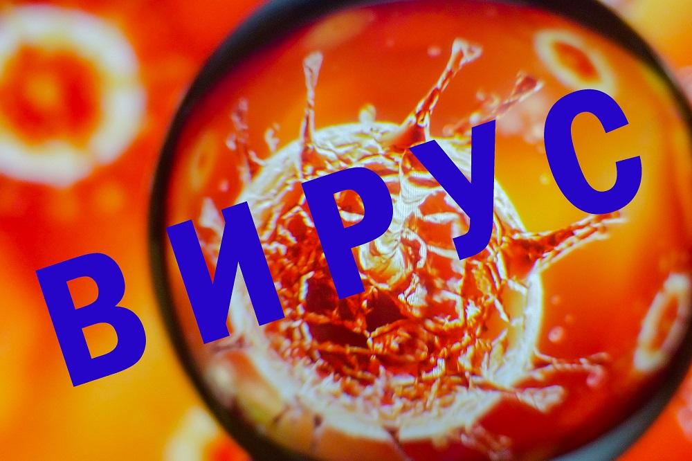 Коронавирус: появился экспресс-тест с результатом через час