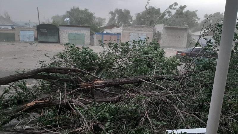 В Аягозе ВКО подсчитывают ущерб после урагана