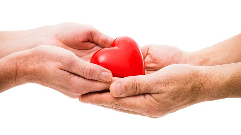 Вывоз донорских органов за границу предлагают ограничить