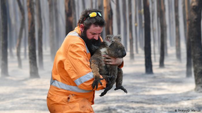 Премьер Австралии предупредил о возможном ухудшении ситуации с пожарами на востоке страны