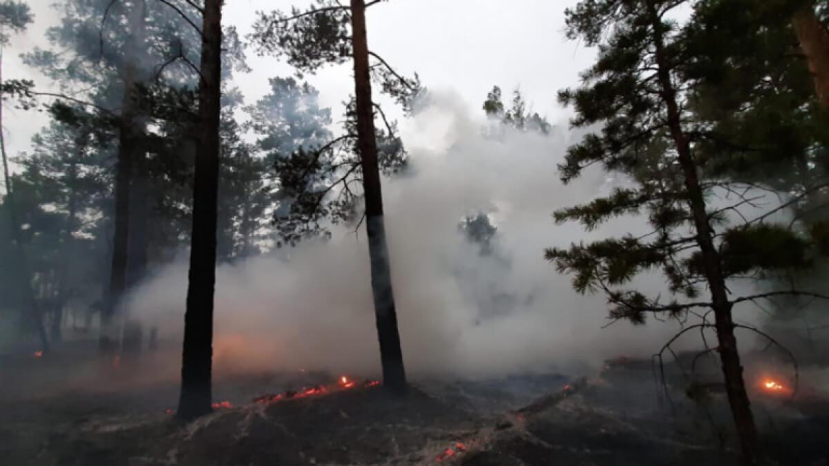 Қарағанды және Шығыс Қазақстан облыстарында тәулігіне 10 табиғи өрт сөндірілді
