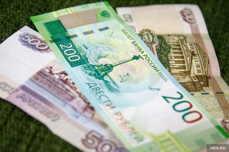 Названо количество семей в РФ, которым хватает денег на еду и одежду