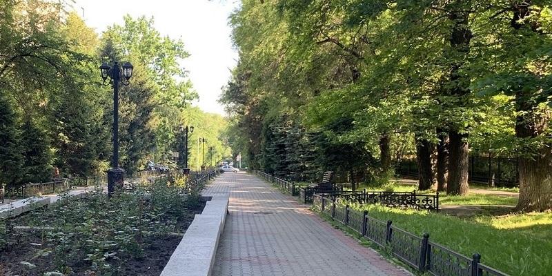 В Алматы планируют высадить 257 000 деревьев