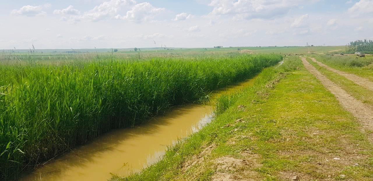 Из-за подтопления в Туркестанской области сроки расчистки каналов сдвинулись - Магзум Мирзагалиев