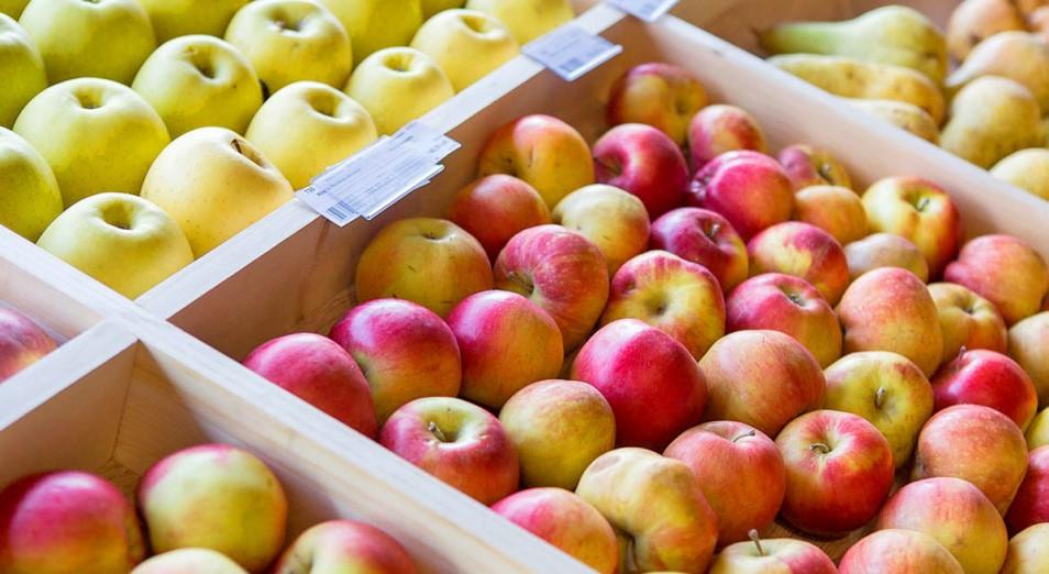 Минсельхоз: Казахстану нужны два новых сахарных завода и яблоневые сады