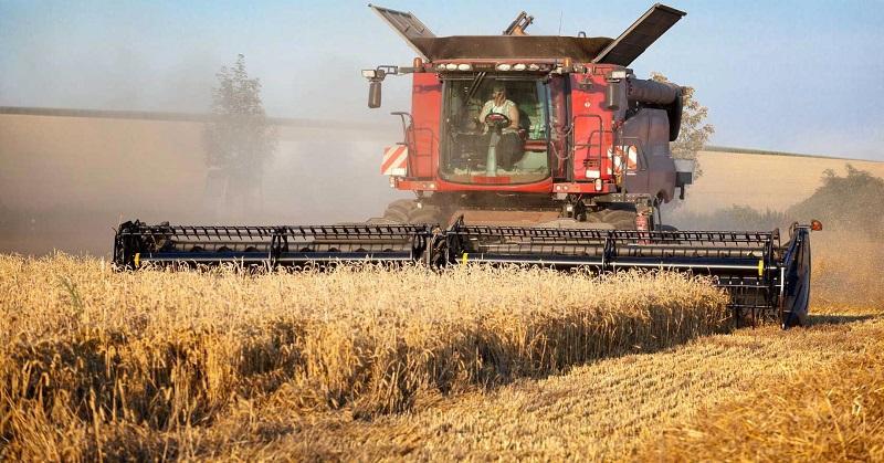 В Казахстане заявили об опережающих темпах уборки урожая