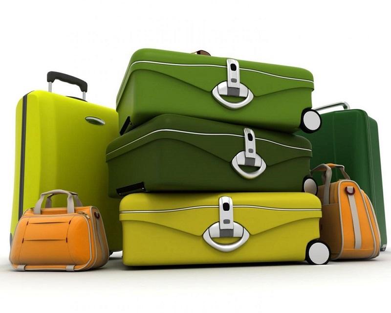 В России ужесточат правила провоза в багаже фруктов