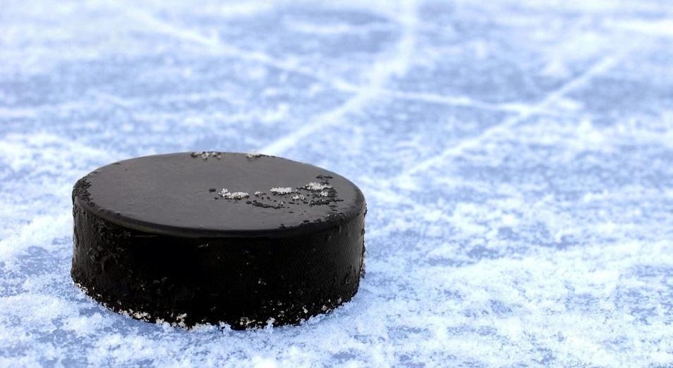 Казахстан стартует на виртуальном мировом первенстве по хоккею