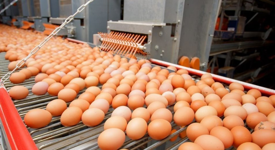 В Казахстане могут подорожать яйца