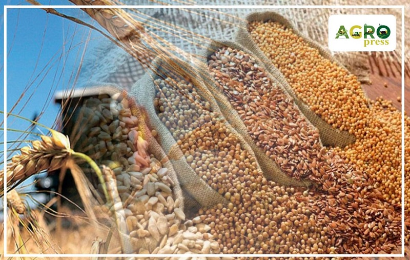 МСХ РК отмечает недостаточный объем семян под урожай 2020 года в ряде областей страны