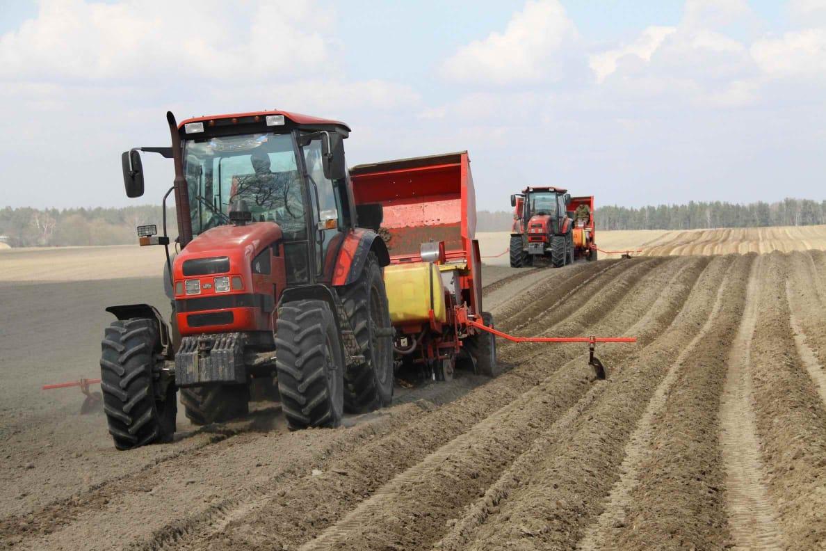 «Экономика простых вещей» финансирует весенние полевые работы
