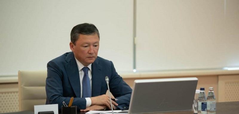 Тимур Кулибаев: Опыт Германии по поддержке бизнеса будет изучен и предложен правительству