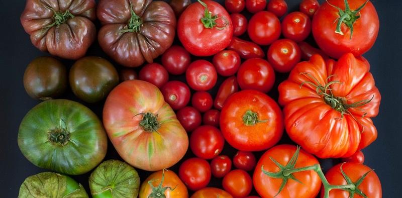 В Казахстане подешевели сезонные овощи