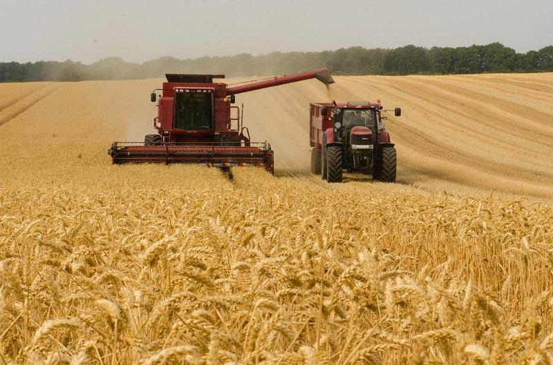 Станет ли сельское хозяйство локомотивом экономики Казахстана?