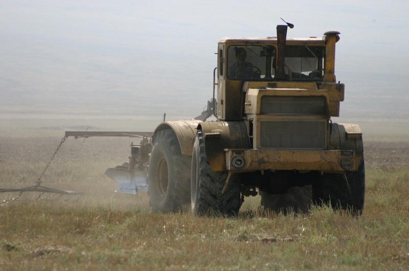 Сельхозпроизводство в Казахстане в январе-августе выросло на 3,6%