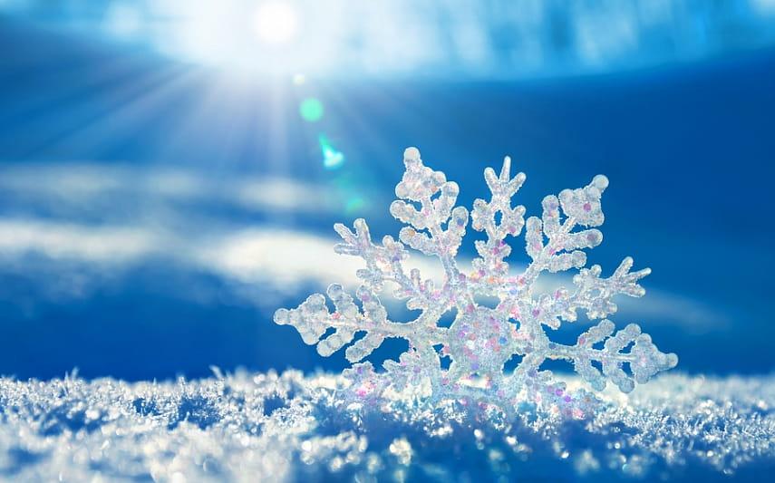 Снегопад в южных регионах РК может привести к потере урожая
